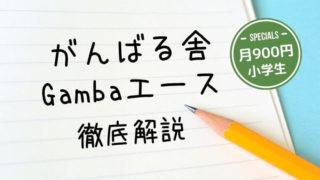 【がんばる舎】口コミ・評判と料金まとめ|Gambaエース小学生
